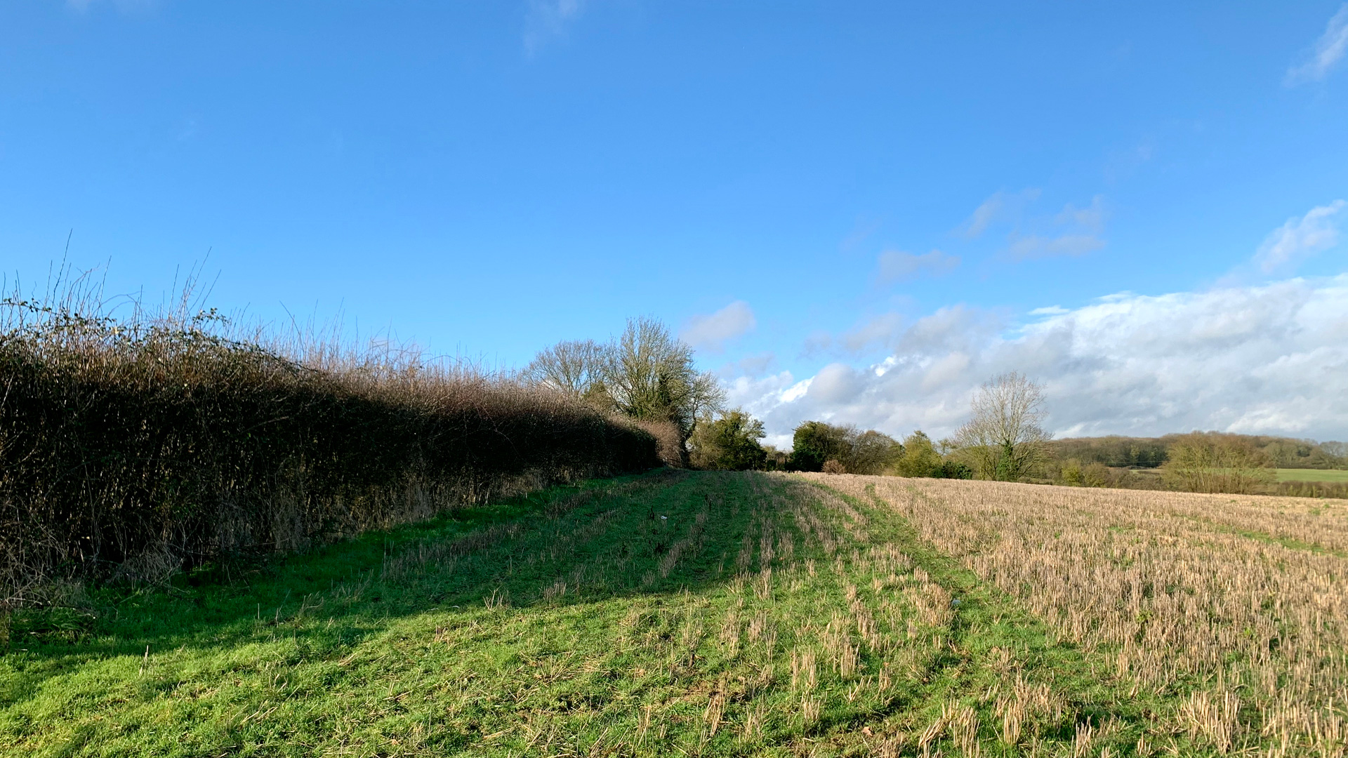 Agricultural land for sale in Aston End