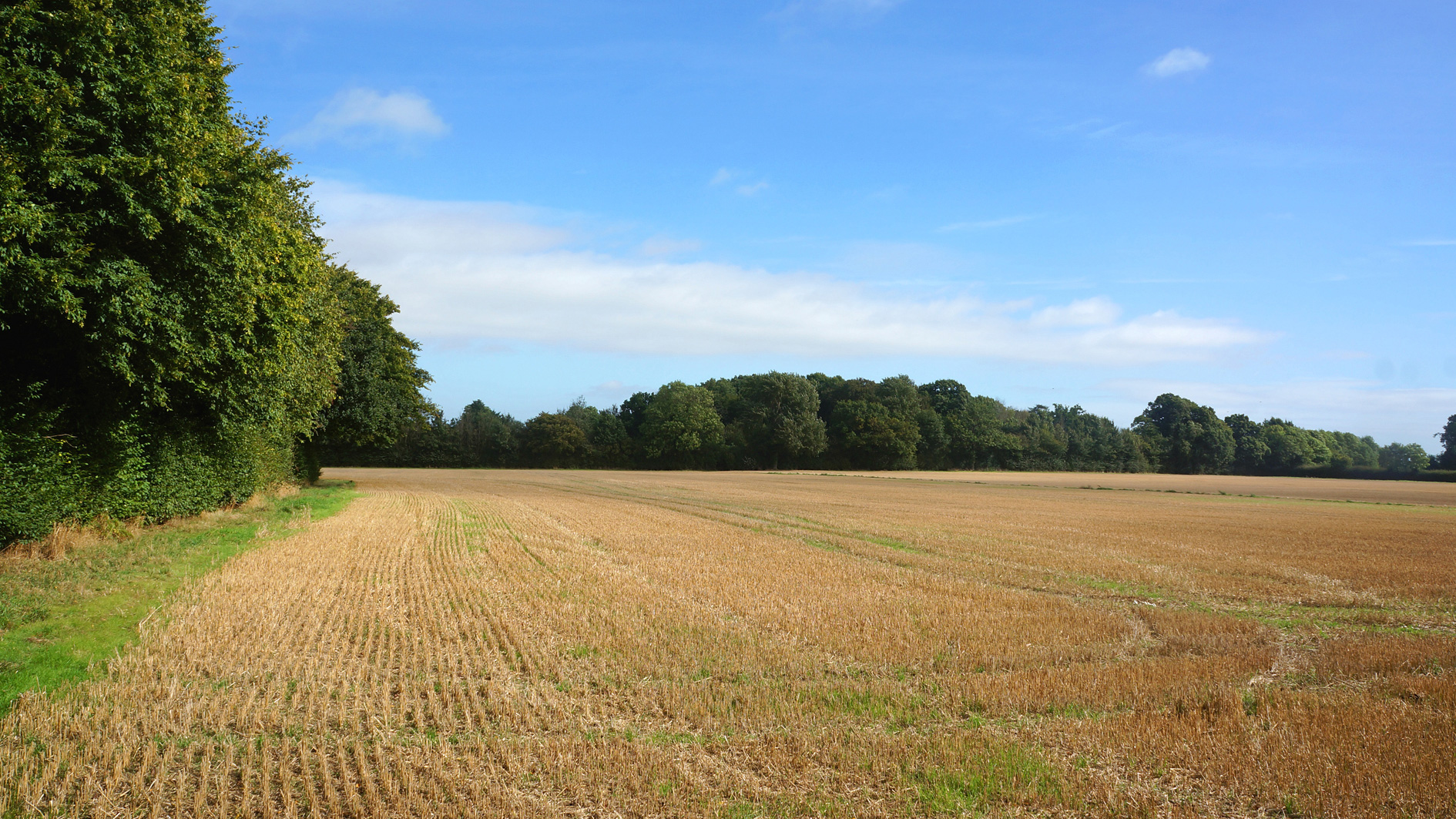 Agricultural land for sale in Gaddesden Row