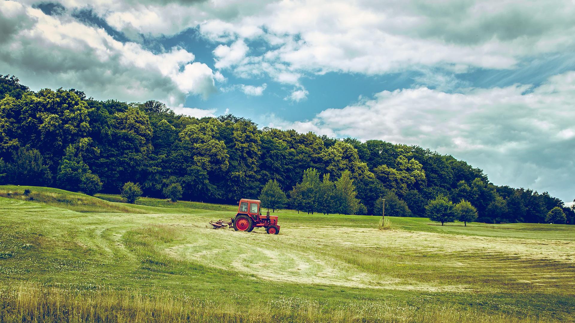Land Use - UK Land Uses - Land Types - Land Usage