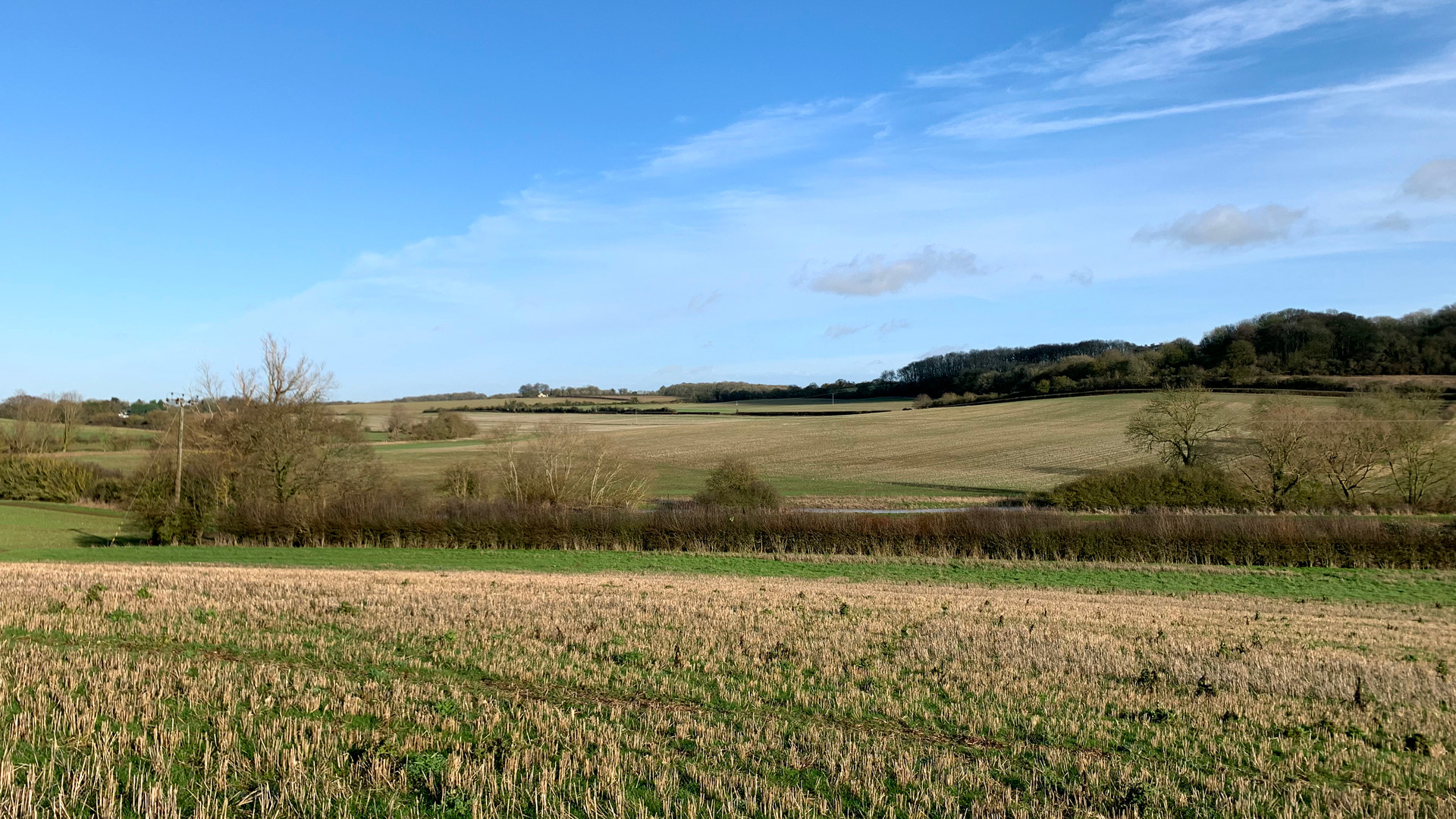 Arable land for sale in Aston End
