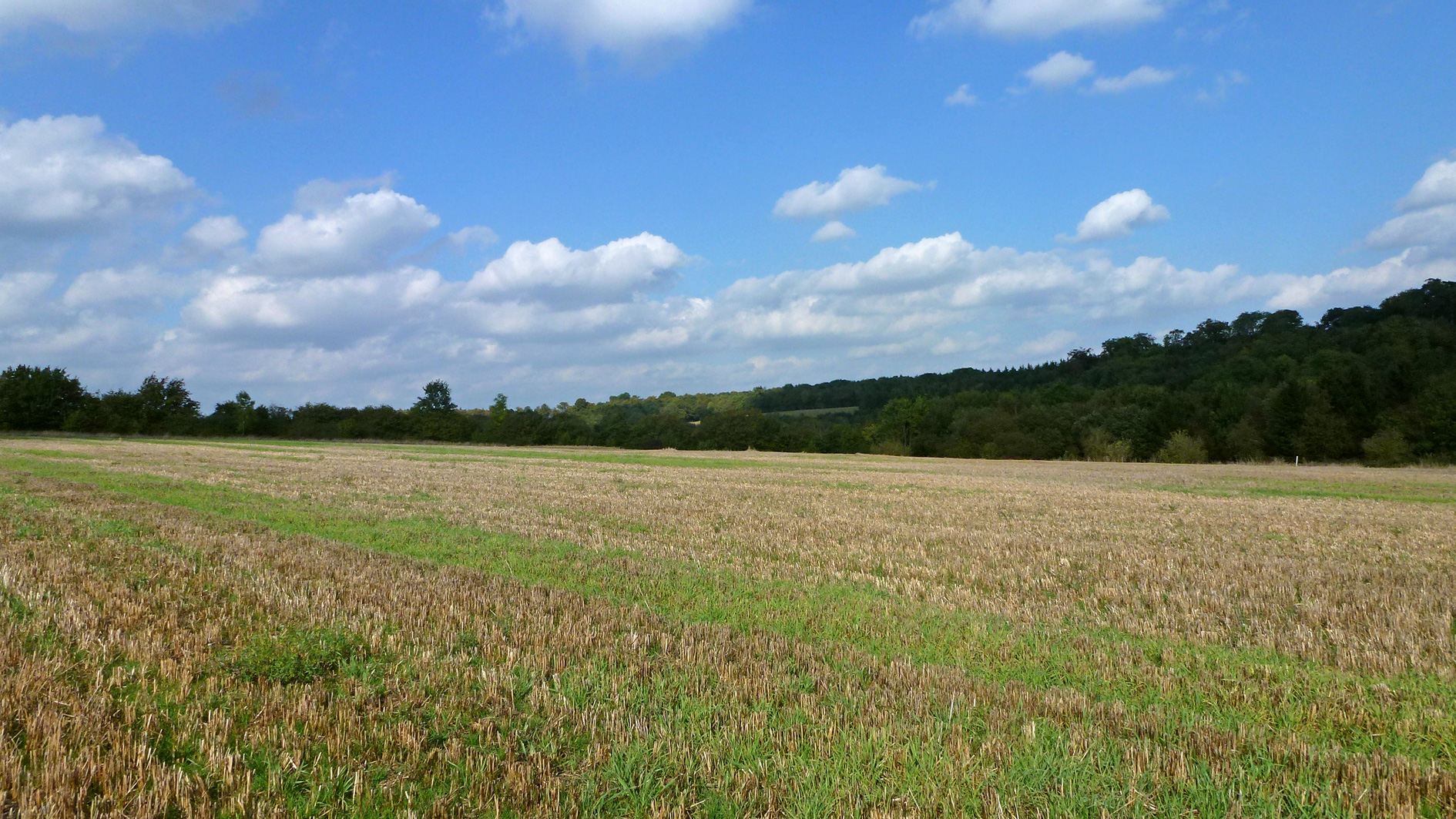 Farmland for sale near Watford
