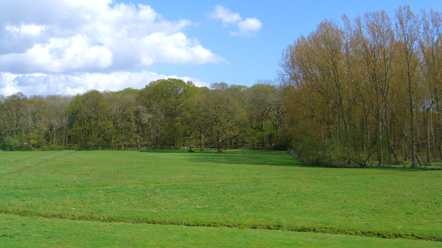Grazing land for sale in Havant