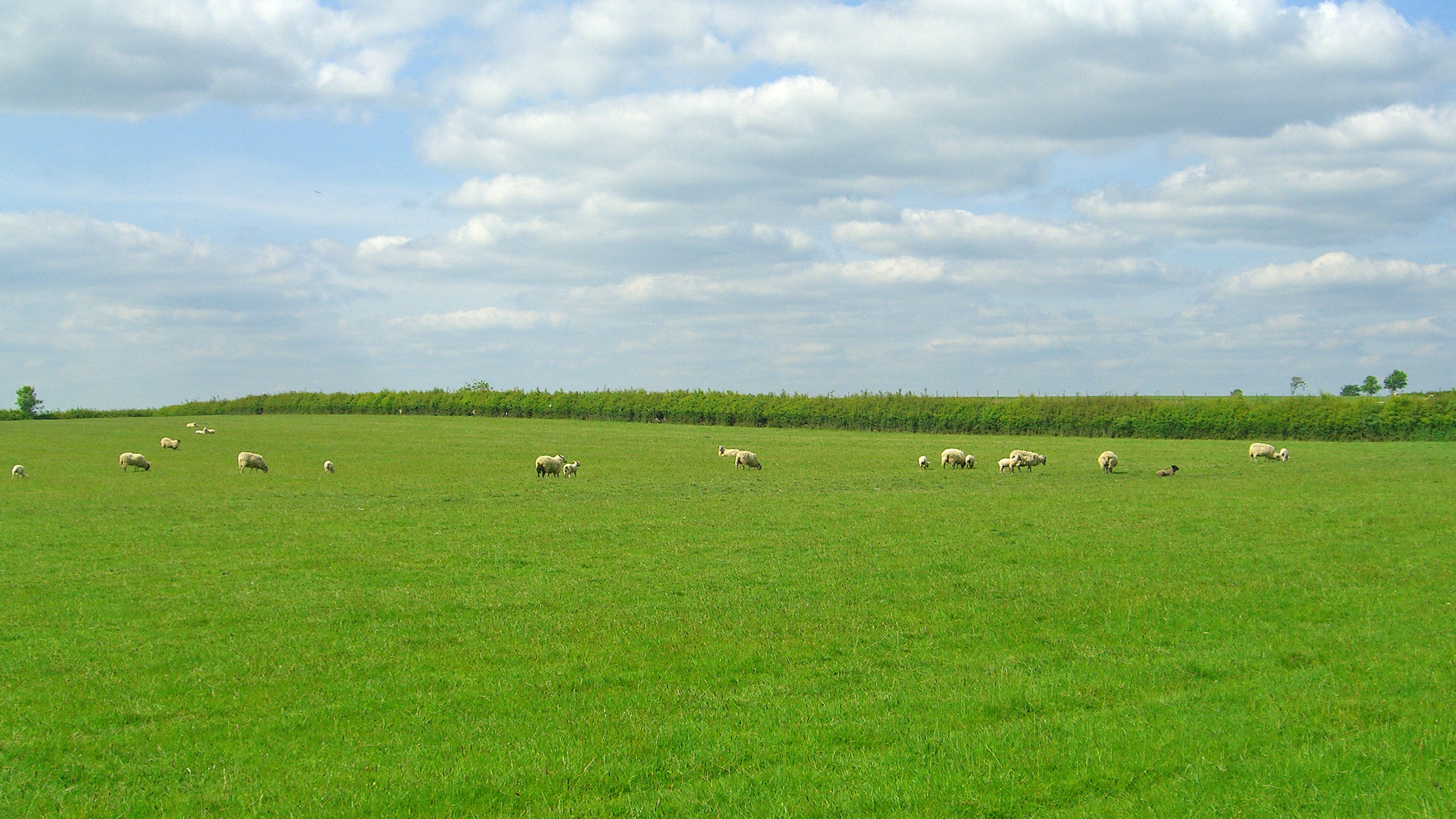 Grazing land for sale in Kingswood