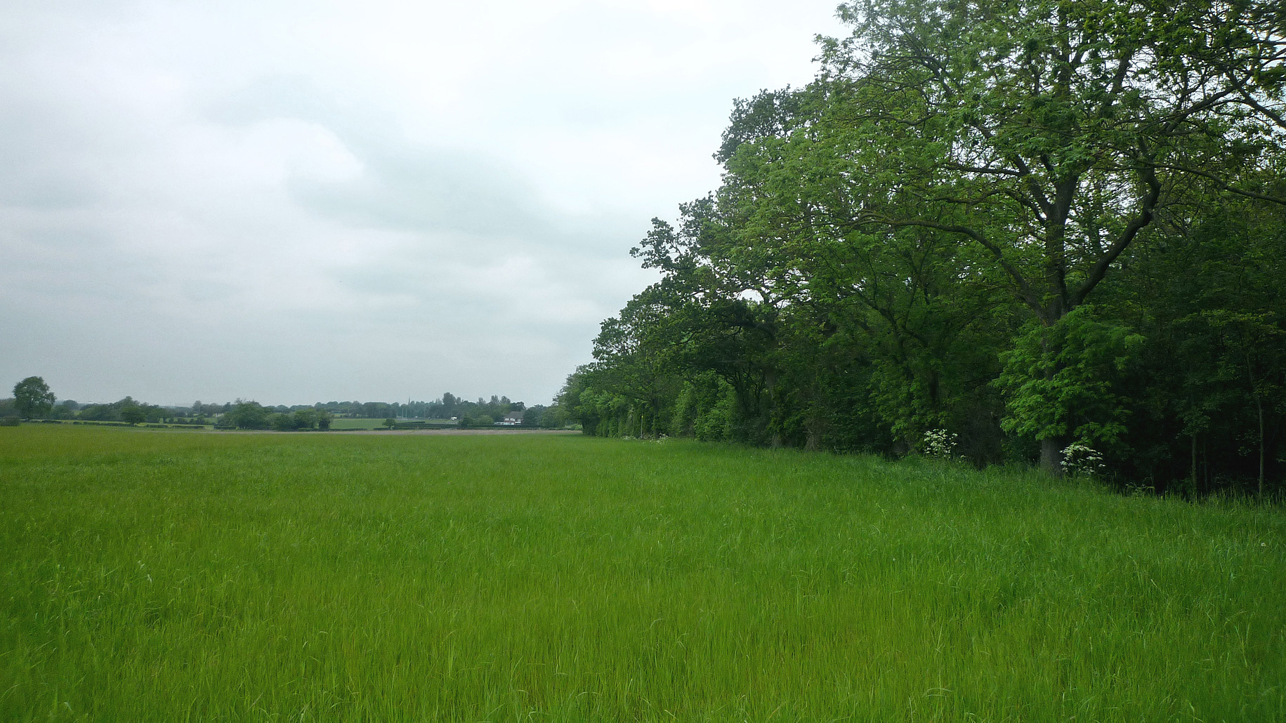 Grazing land for sale in Solihull, Birmingham