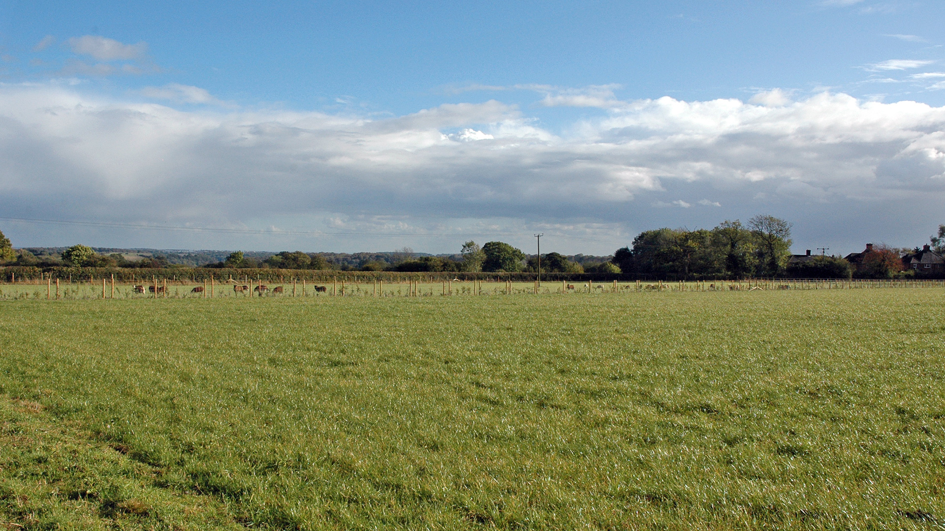 Grazing land for sale in Water End, High Wycombe