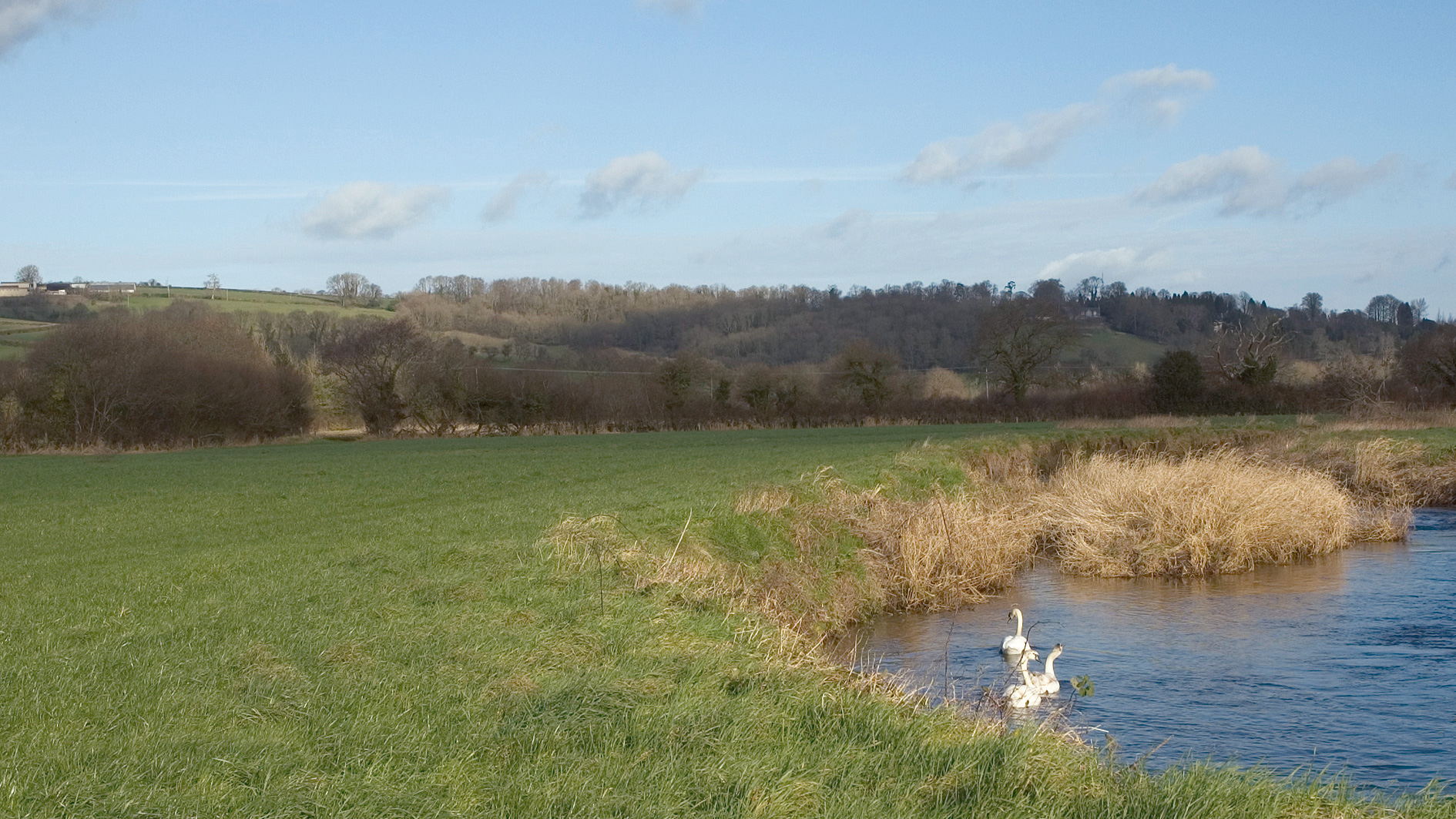 Land for sale next to river in Axminster