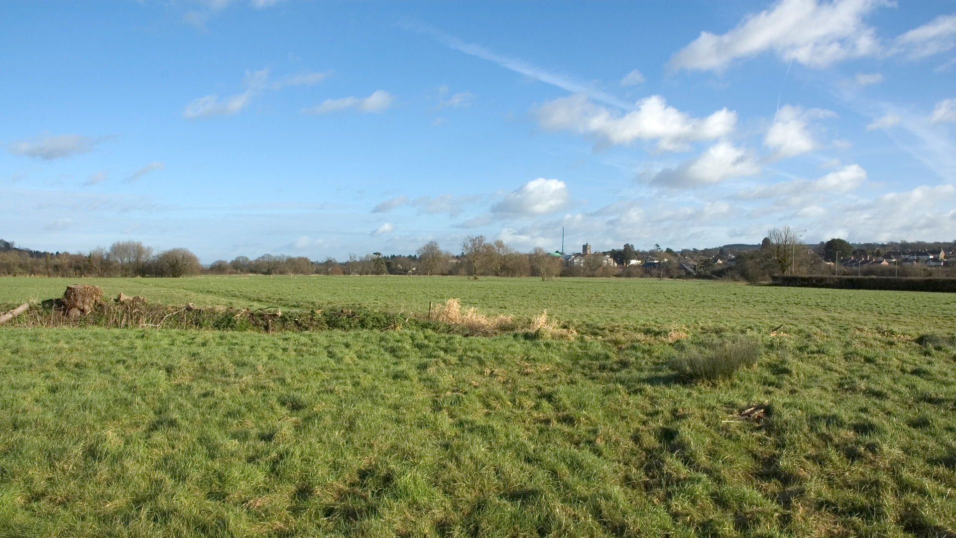 Land for sale in Axminster