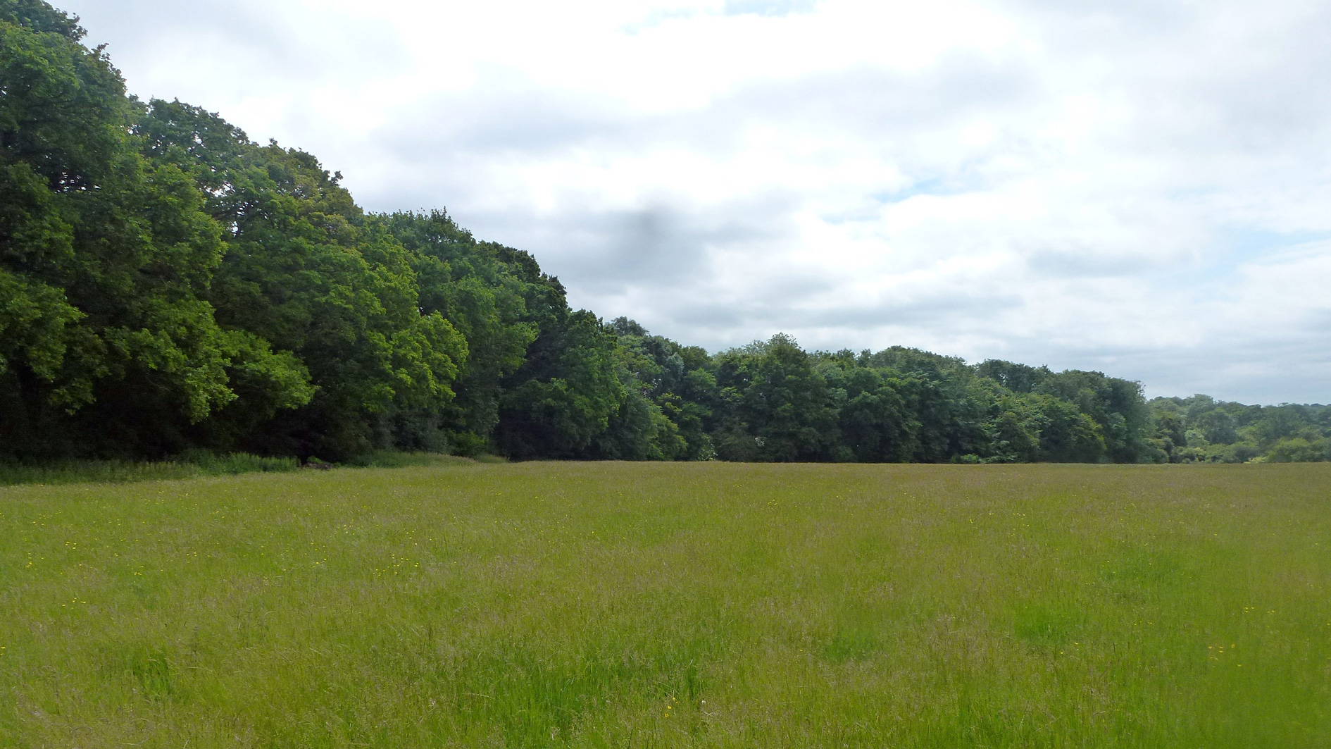 Land for sale in Charlwood