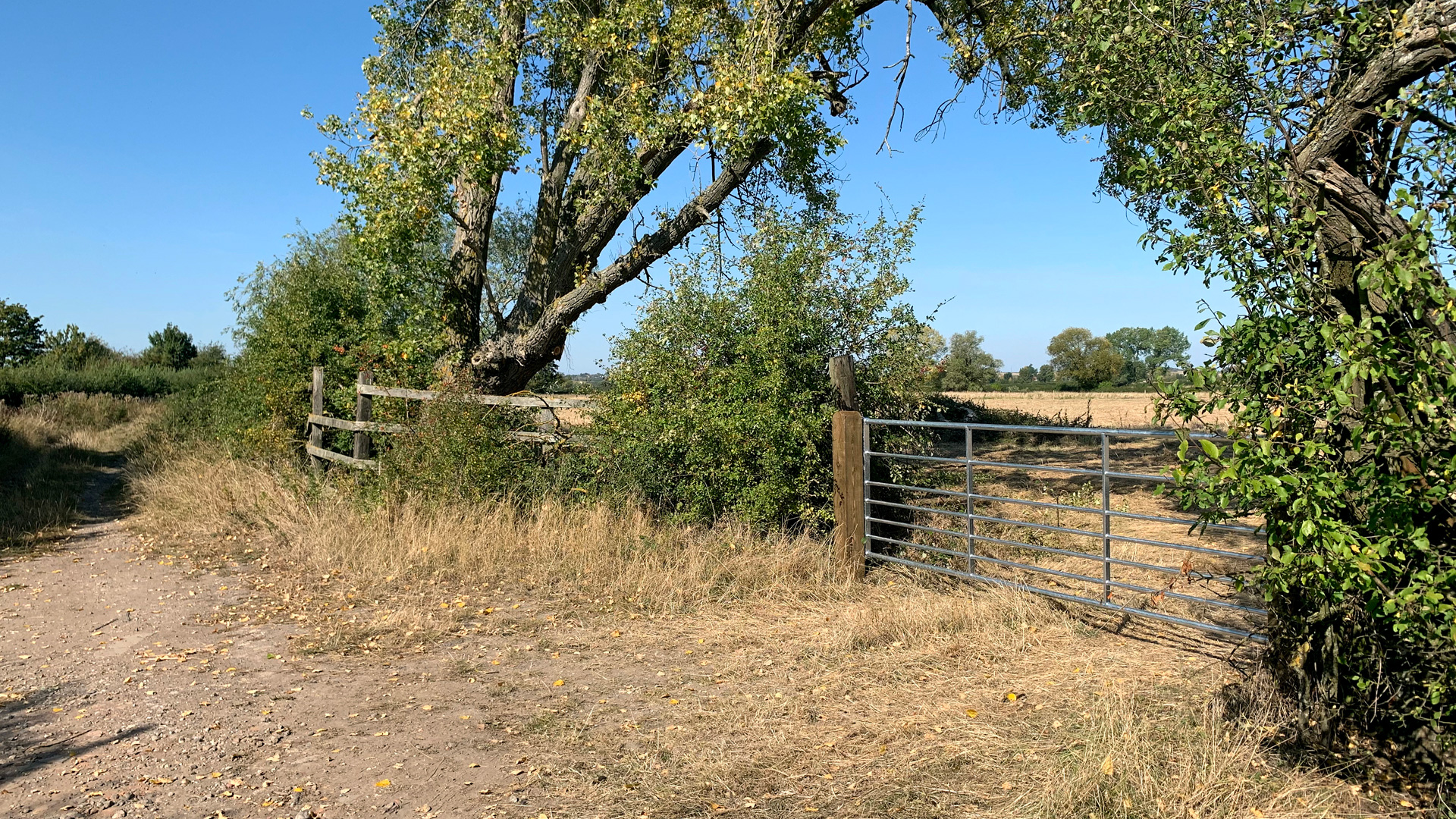 Land for sale at Draytonmead Farm access to Lots 1 & 2