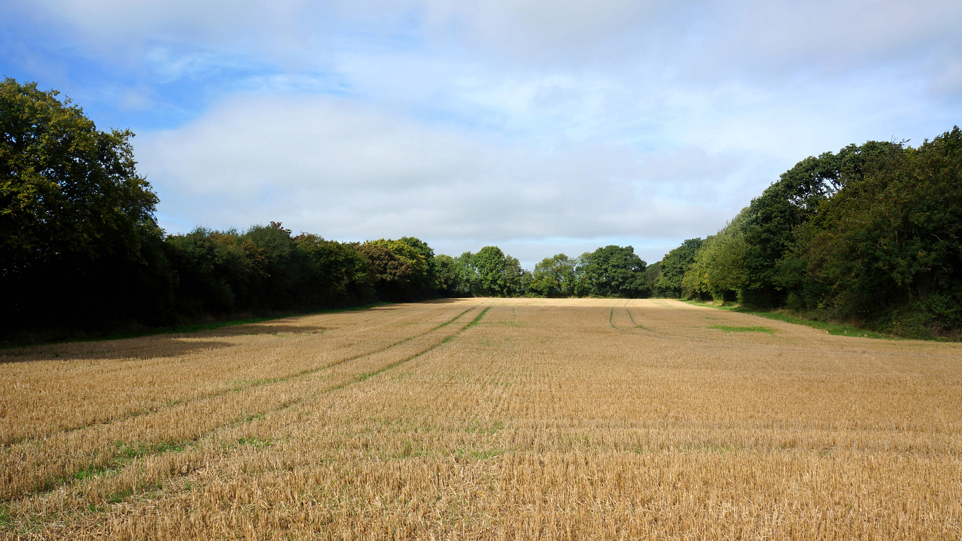 Land for sale in Gaddesden Row