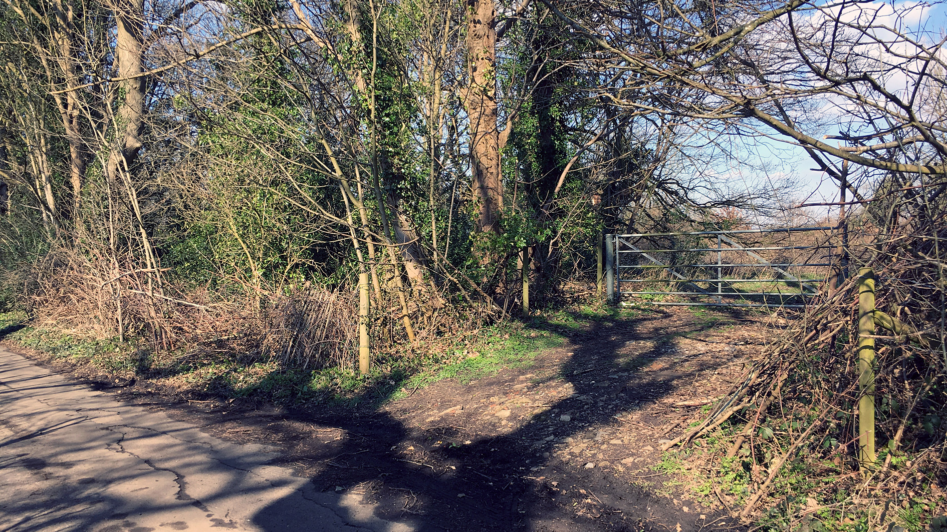 Land for sale in Kenley access