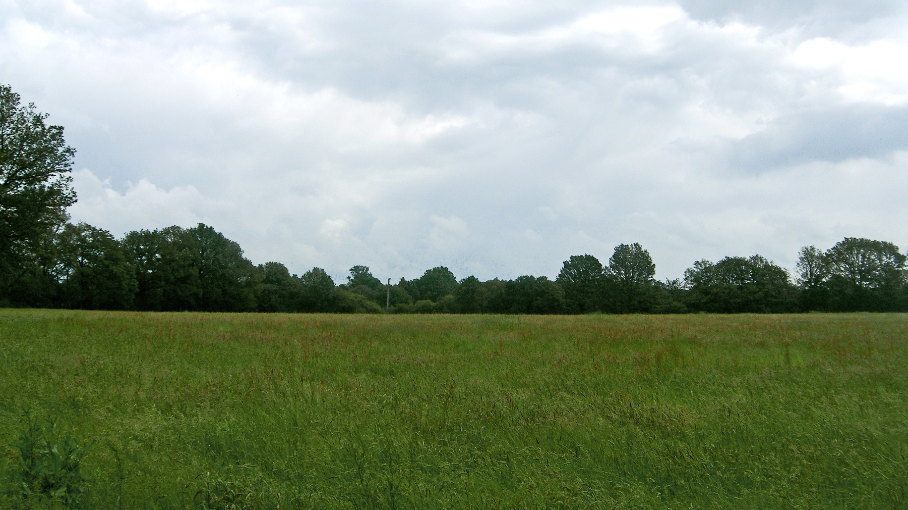 Land for sale in Lingfield