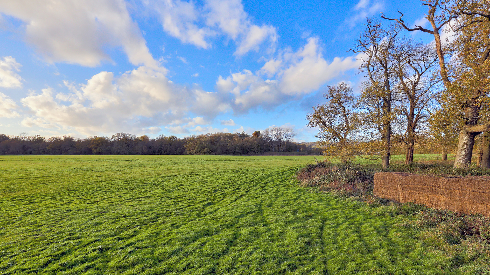 Land for sale in Sevenoaks