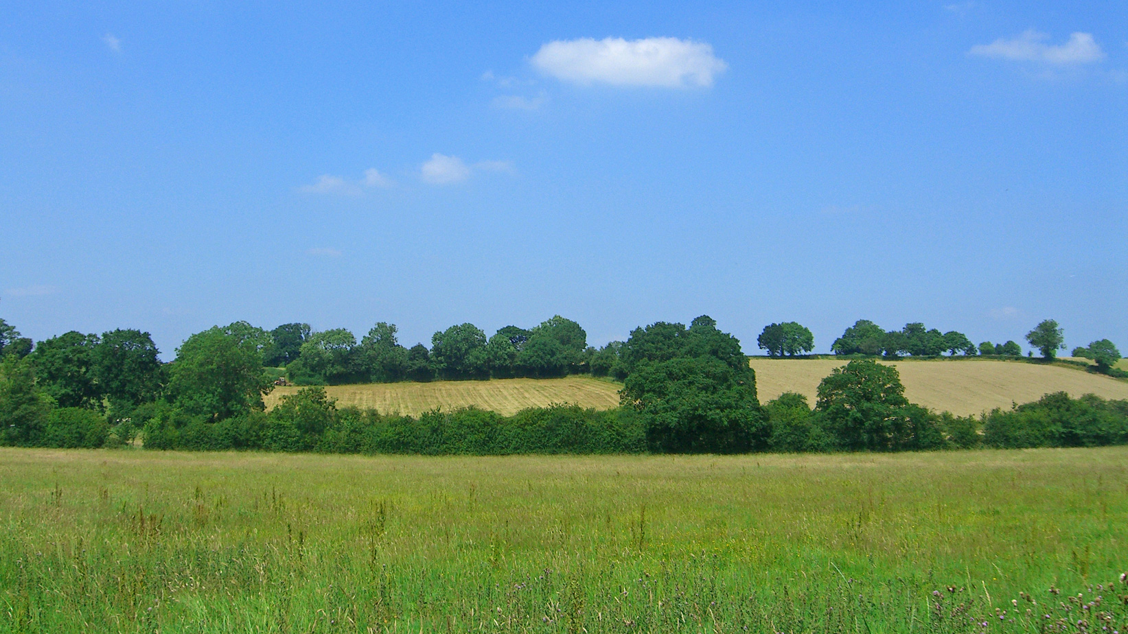 Land for sale in Shrewley