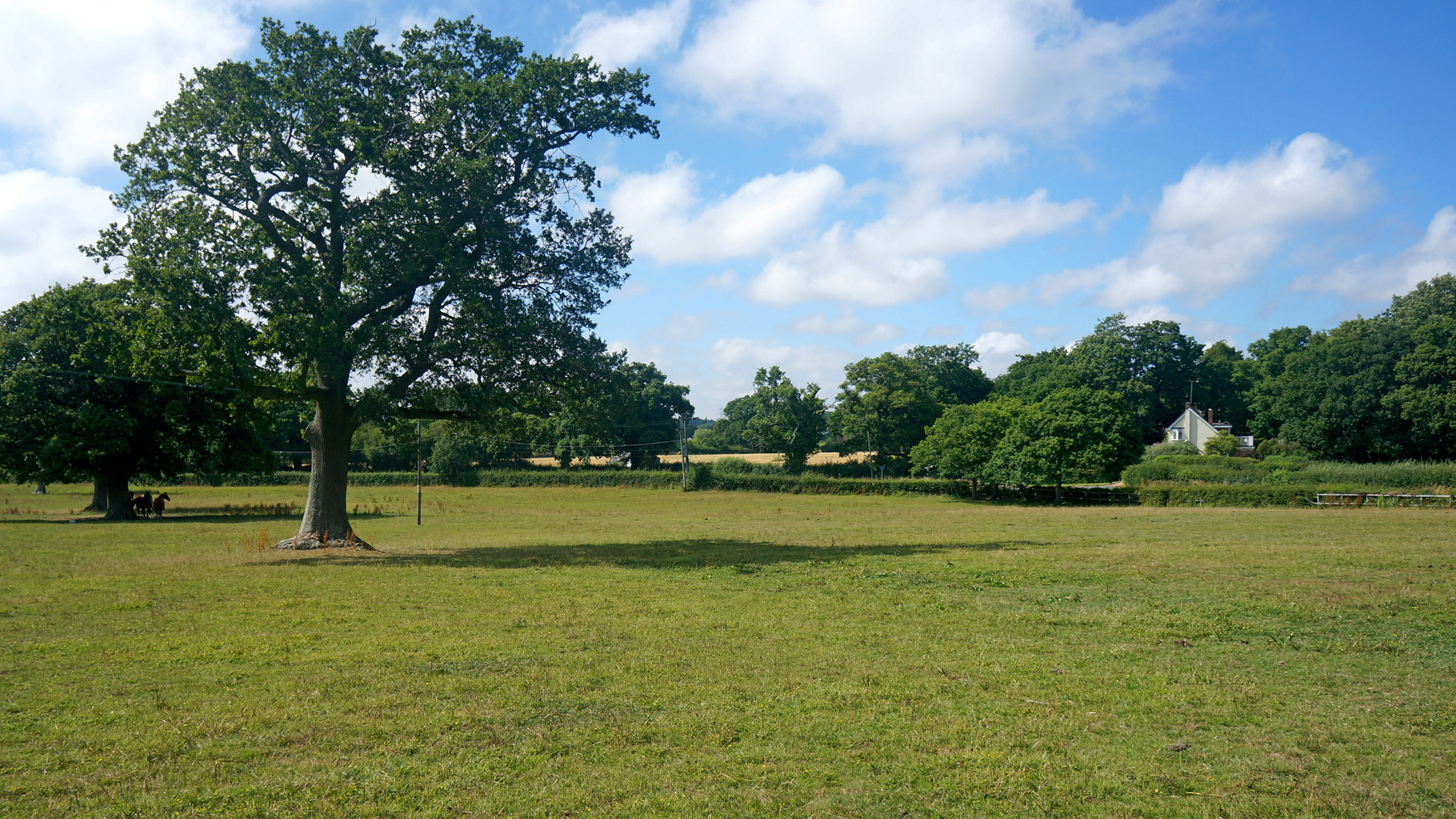 Land for sale in Waterlooville, Hampshire
