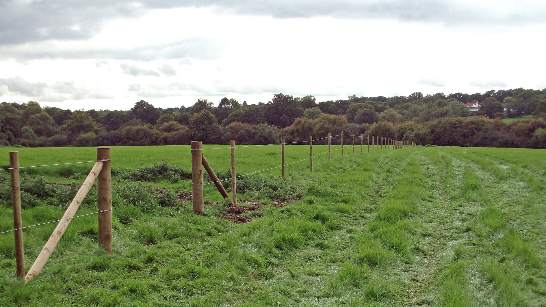 Paddock land for sale in Charlwood