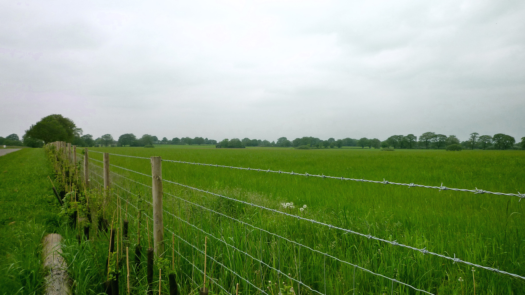 Paddock land for sale in Solihull, Birmingham