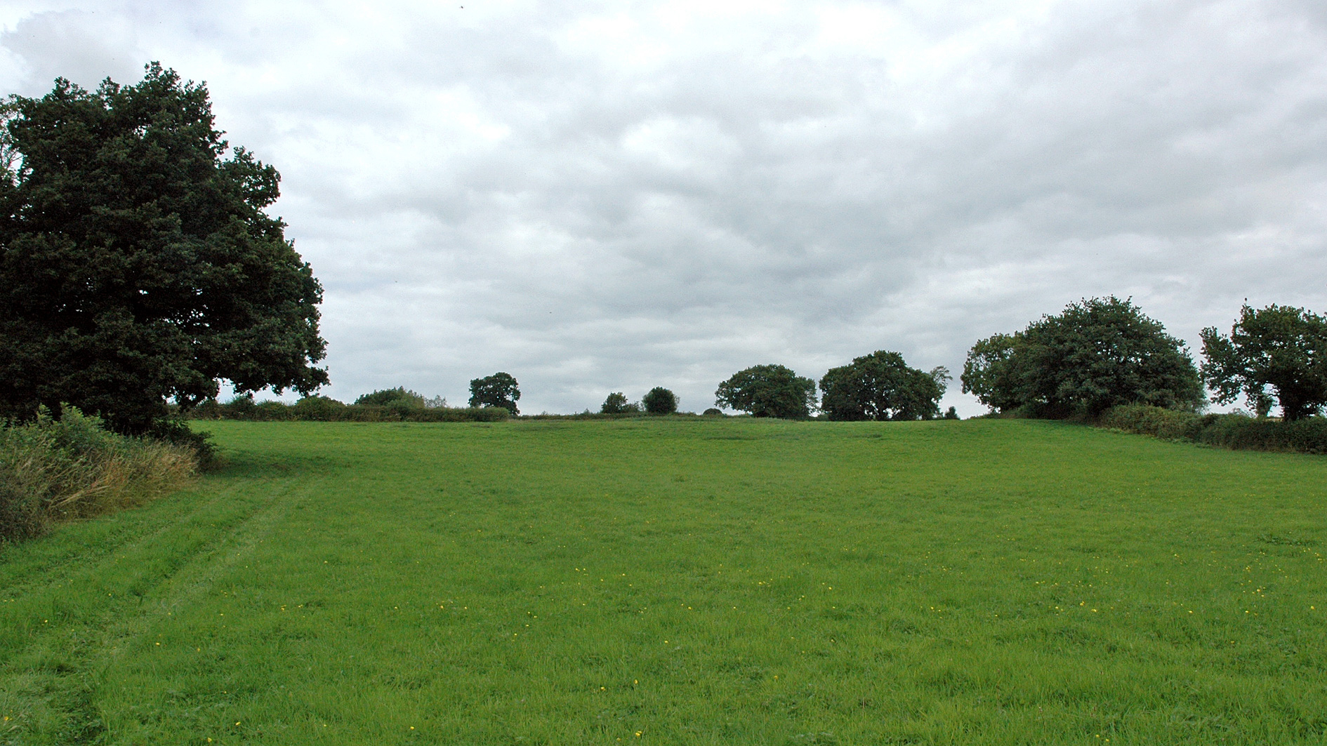 Paddock land for sale in Stanley, Ilkeston