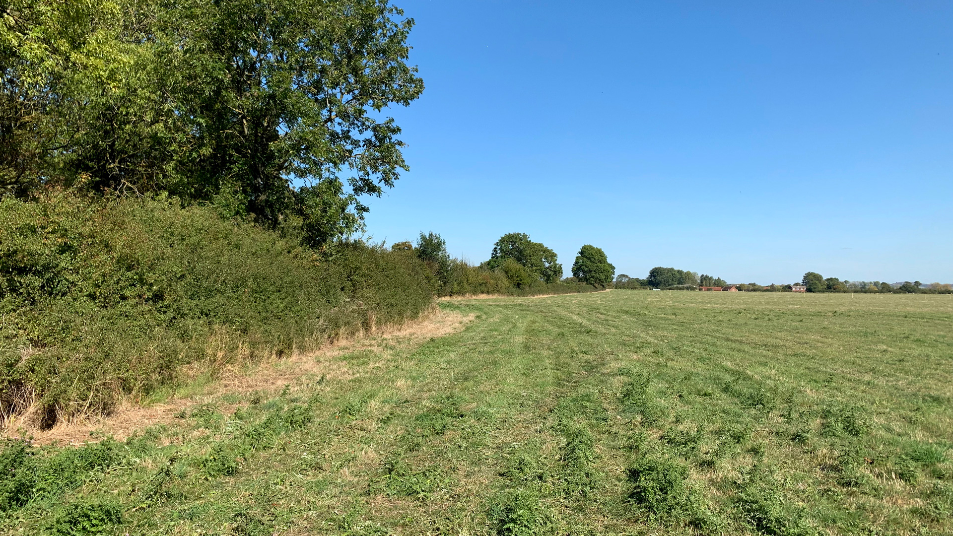 Pasture land for sale in Buckland